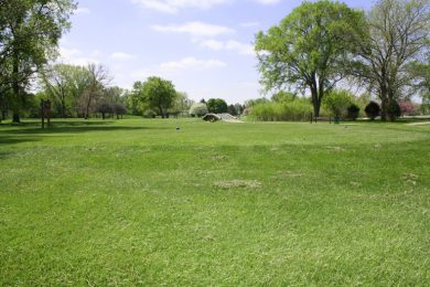 Woodsview_golf-course